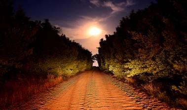 Cadávere carretera 1